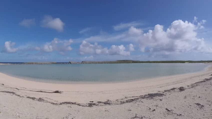 beach-scrub