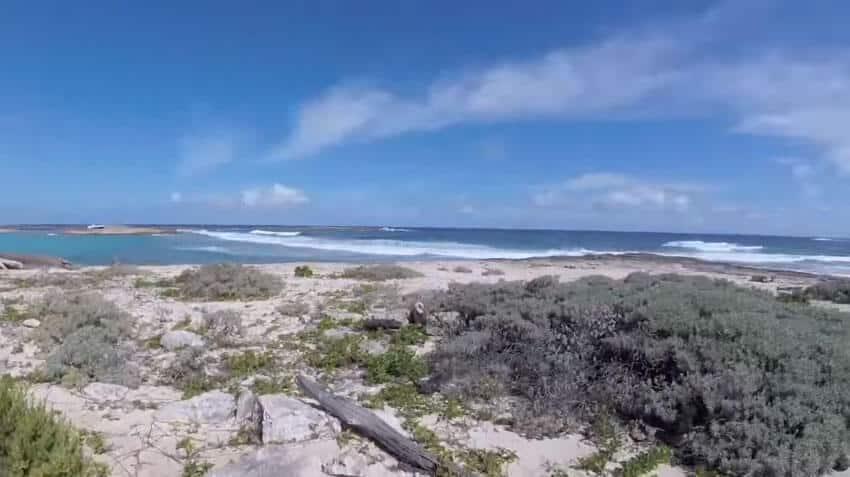 beach2-scrub